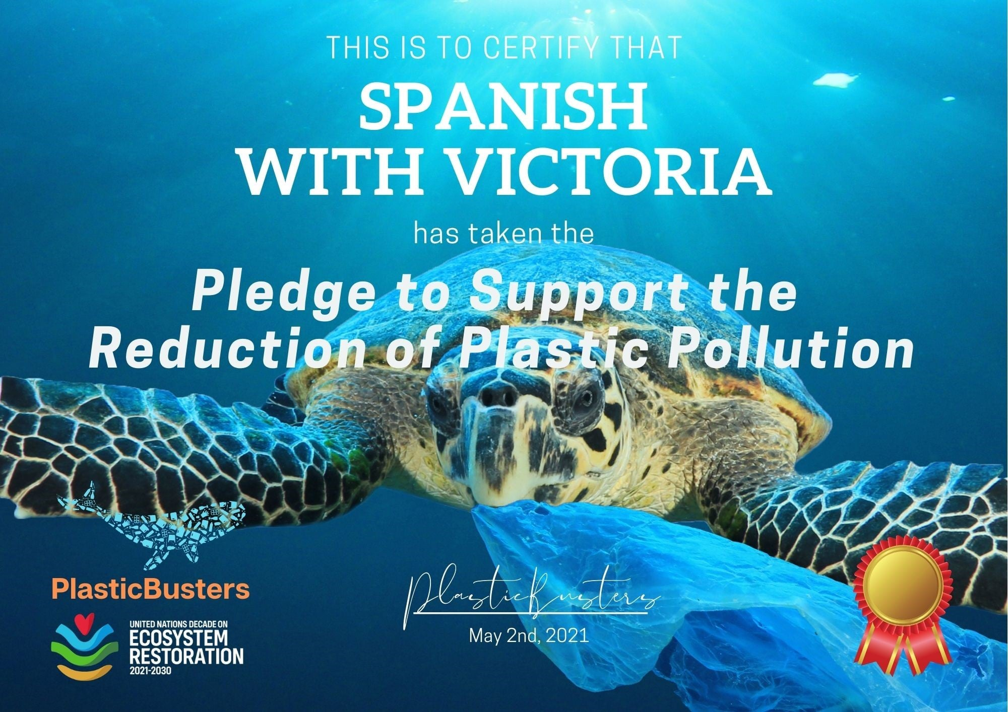 Plastic Buster Pledge